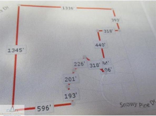 0 Snowy Pine, Charlotte, MI 48813 Photo 1