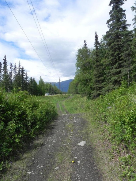 6459 N. Tazlina, Palmer, AK 99645 Photo 7