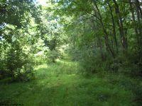 Home for sale: 133.25 Ac Walnut Fork, Alum Bridge, WV 26321
