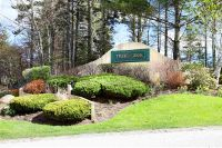 Home for sale: 115 Silver Birch Ext, Dover, VT 05356
