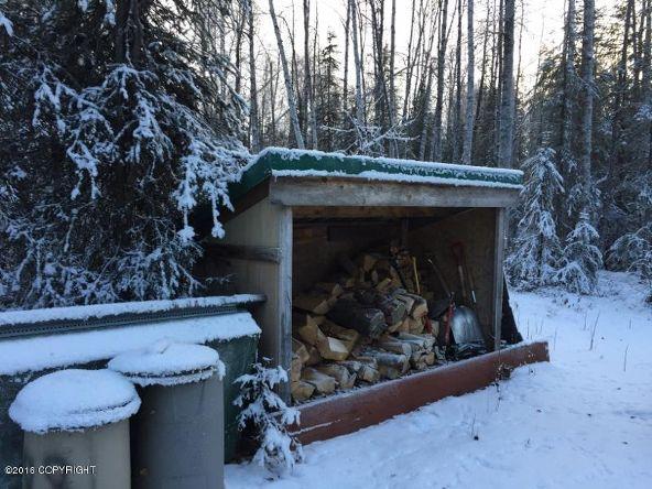 52738 S. Snowy Owl Cir., Willow, AK 99688 Photo 22