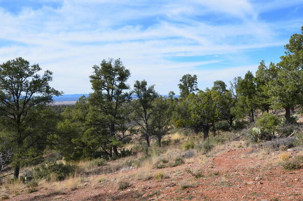 13991 N. Grey Bears Trail, Prescott, AZ 86305 Photo 23