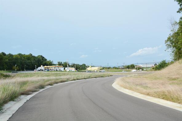 4 Noahs Way, Williamstown, KY 41097 Photo 7