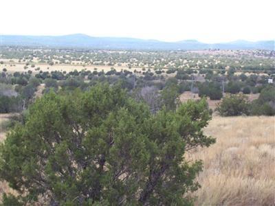 204 Juniperwood Rnch Un 3 Lot 204, Ash Fork, AZ 86320 Photo 6