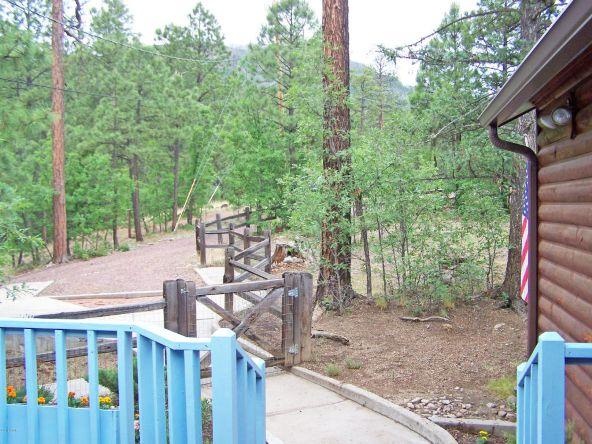 53 County Rd. 2067, Alpine, AZ 85920 Photo 5