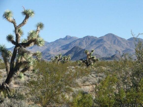 3529-C Arroyo Rd., Yucca, AZ 86438 Photo 14