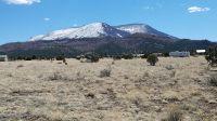 Home for sale: Lot 187 White Mtn Acres, Nutrioso, AZ 85932