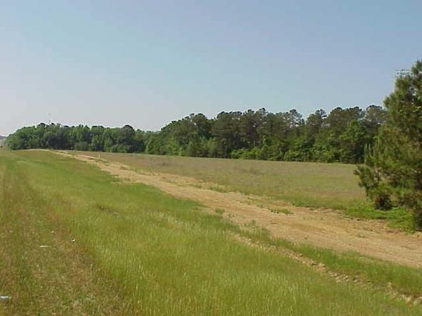 231 231 South, Dothan, AL 36301 Photo 1