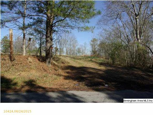 3 Horton Mill Rd., Oneonta, AL 35121 Photo 26