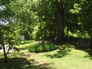 19444 Hwy. 289 North Hwy., Mammoth Spring, AR 72554 Photo 3