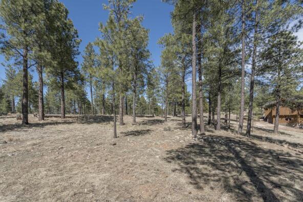 2431 E. del Rae Dr. #181, Flagstaff, AZ 86001 Photo 3