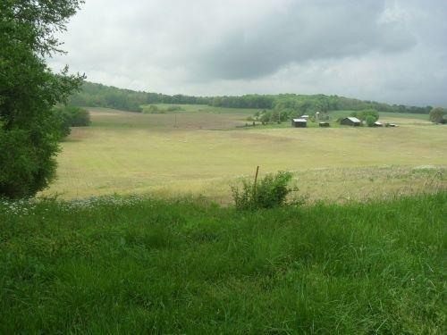 25 Grazeland Dr., Monticello, KY 42633 Photo 4
