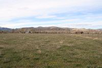 Home for sale: Tbd Challis Creek Rd., Challis, ID 83226