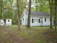 Home for sale: 4784 W. 10 1/2 Mile Rd., Irons, MI 49644