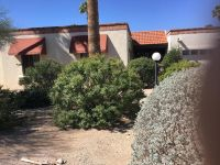 Home for sale: 825 W. Safari, Tucson, AZ 85704