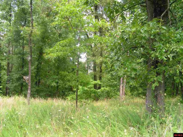 910 Woods Point Rd., Elizabeth, AR 72531 Photo 8