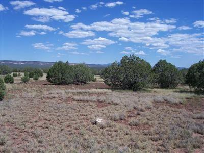 3835 W. Yukon Dr., Ash Fork, AZ 86320 Photo 3