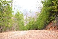 Home for sale: Lot 9 & 10 Green Forest Rd., Cosby, TN 37722