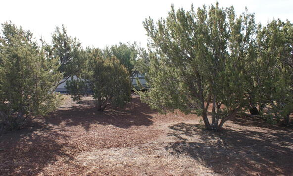 21 T111n R24e Tamarron Ranch, Vernon, AZ 85940 Photo 2