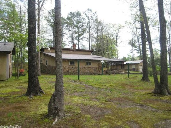 402 Polk 41, Mena, AR 71953 Photo 20
