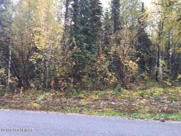 13447 N. Willow Dr., Willow, AK 99688 Photo 6