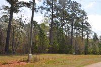 Home for sale: Lot #38 Sammons Parkway, Eatonton, GA 31024