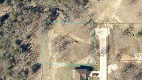 Home for sale: 521 Oak Brook Estates Ln., Walnut Shade, MO 65771