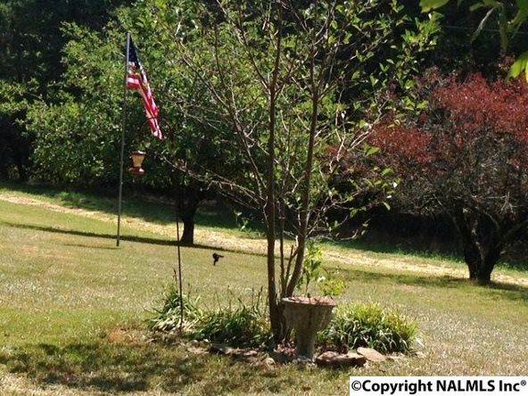 158 County Rd. 944, Mentone, AL 35984 Photo 28