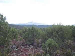 491 Westwood Ranch Lot 491, Seligman, AZ 86337 Photo 1