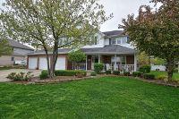 Home for sale: 1070 Grand Mesa Avenue, New Lenox, IL 60451