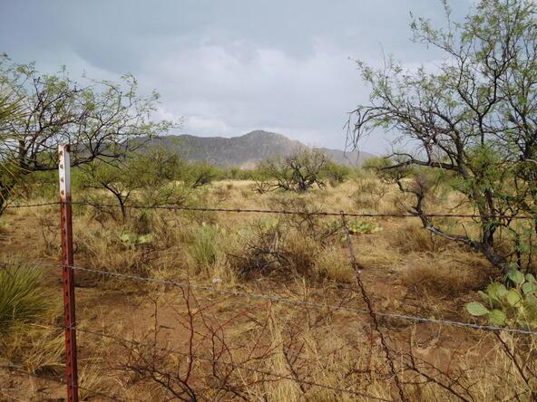 16705 S. Sierrita Mountain, Tucson, AZ 85736 Photo 6
