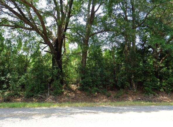 30 Crain, Bryant, AR 72022 Photo 14