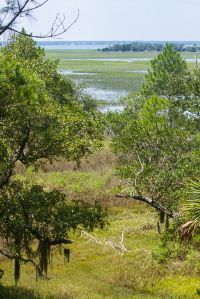 Home for sale: 105 Old House Ln., Dewees Island, SC 29451