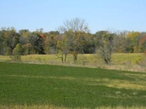 27.55 Acre State Hwy. 32, Sheboygan Falls, WI 53085 Photo 3