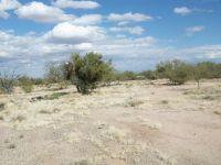 Home for sale: 15020 W. Cattle Trl, Tucson, AZ 85736