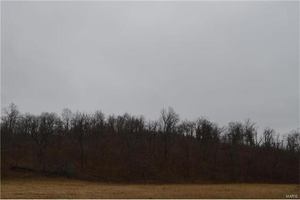 1 State Rd. Yy- D, Tunas, MO 65674 Photo 20