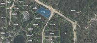 Home for sale: 187 Paris St., Interlachen, FL 32148
