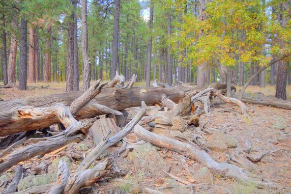 8100 W. Dk Ranch Rd., Flagstaff, AZ 86005 Photo 21