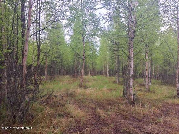 48601 Linger Ln., Soldotna, AK 99669 Photo 8
