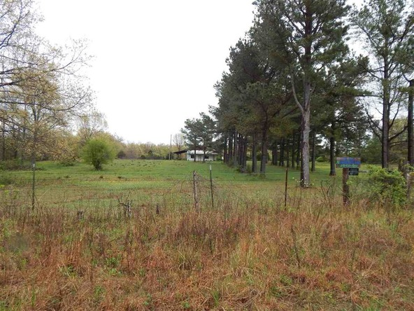 50 Big Creek, Highland, AR 72542 Photo 7