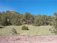 Home for sale: 0 Hop Canyon Rd., Magdalena, NM 87825