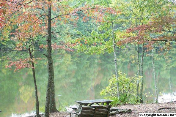 9 South Bluff Trail, Huntsville, AL 35803 Photo 16