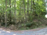 Home for sale: Turner Mountain Rd., Hokes Bluff, AL 35903