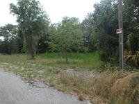 Home for sale: 7060 E. Gunn Ct., Inverness, FL 34450
