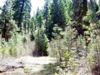 Home for sale: 10 Crocus Ct., Cascade, ID 83611