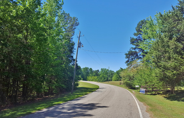 3290 Louina Rd., Roanoke, AL 36274 Photo 26