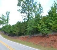 80 Acres, North Side Of Hwy. 50, Dadeville, AL 36853 Photo 21
