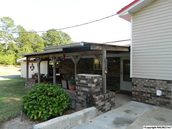 2200b Hwy. 68, Collinsville, AL 35961 Photo 5