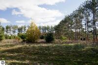 Home for sale: 0011 Lipp Farm Rd., Benzonia, MI 49616