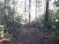 Home for sale: 0 Manzanita Rd., Sutter Creek, CA 95685